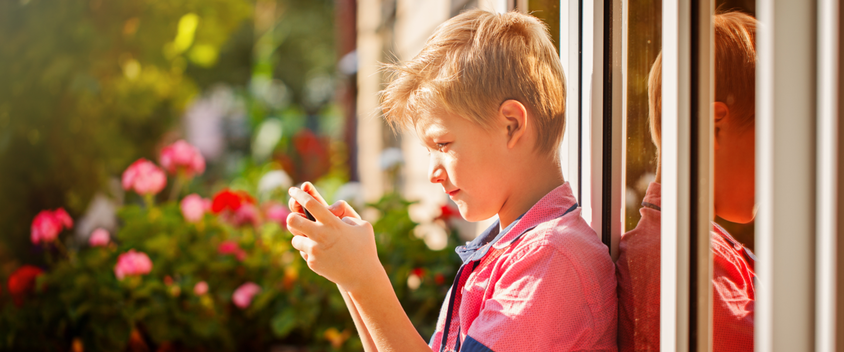 Photograph of a boy looking at a phone in a garden